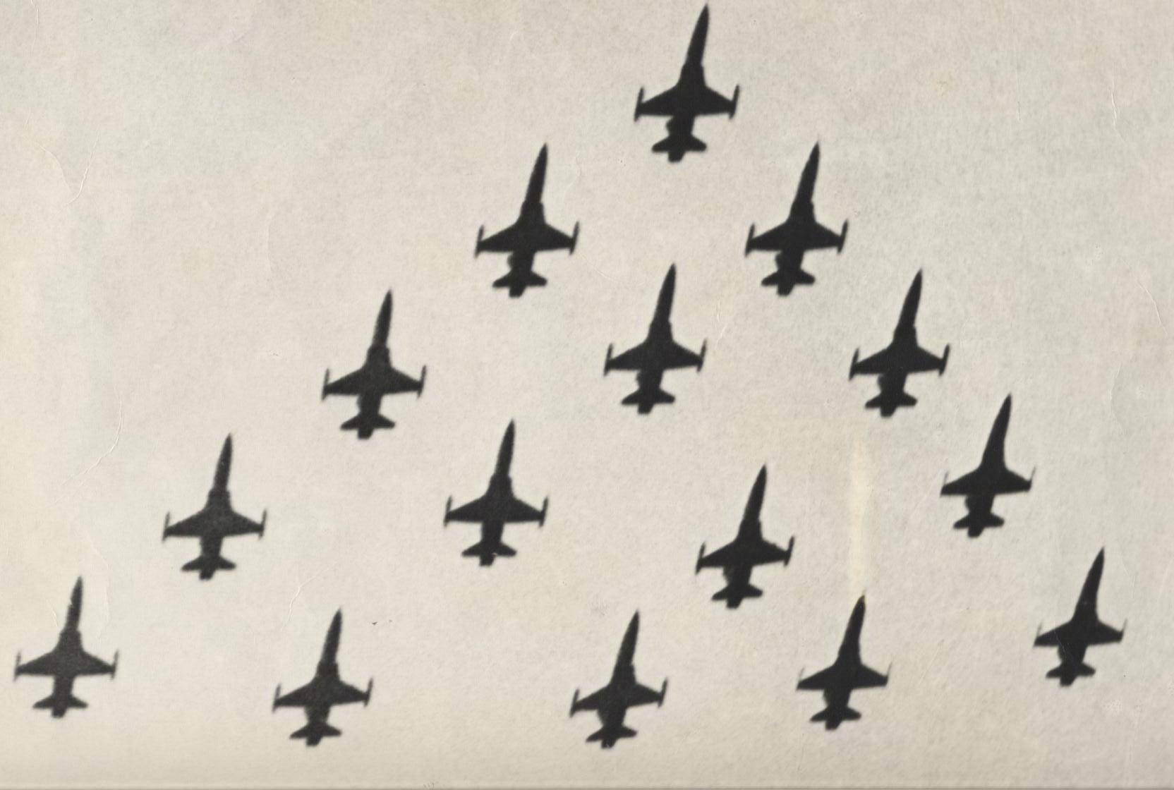 雷虎小組F-5A型機十五編隊特技表演(圖:國防部空軍司令部)