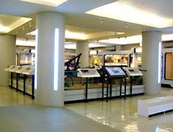 第五陳展室展場實景-重兵器區