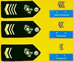 海軍陸戰隊士官軍銜