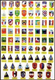 陸軍隊徽臂章展示