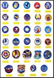 空軍隊徽臂章展示