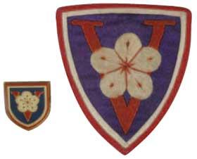 青年軍二0九師臂章